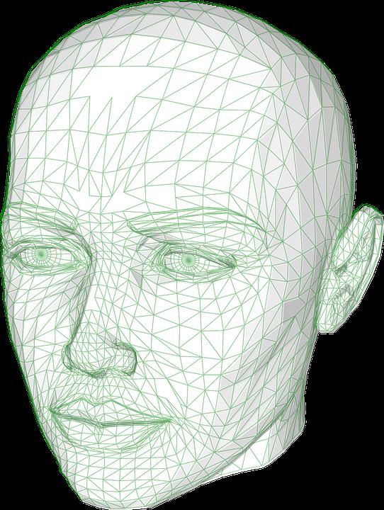 Kopf Drahtmodell Grafiken Modell · Kostenlose Vektorgrafik auf Pixabay