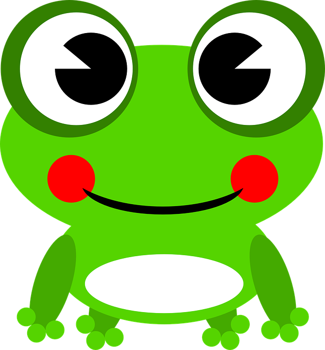 Frog Amphibian Animal · Free vector graphic on Pixabay