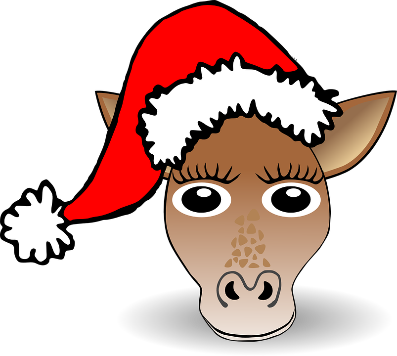 Free vector graphic: Horse, Mule, Pony, Animal - Free Image on ...
