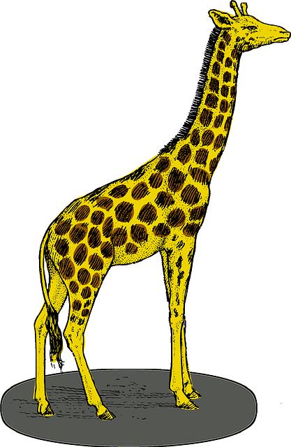720+ Gambar Animasi Hewan Jerapah Terbaru