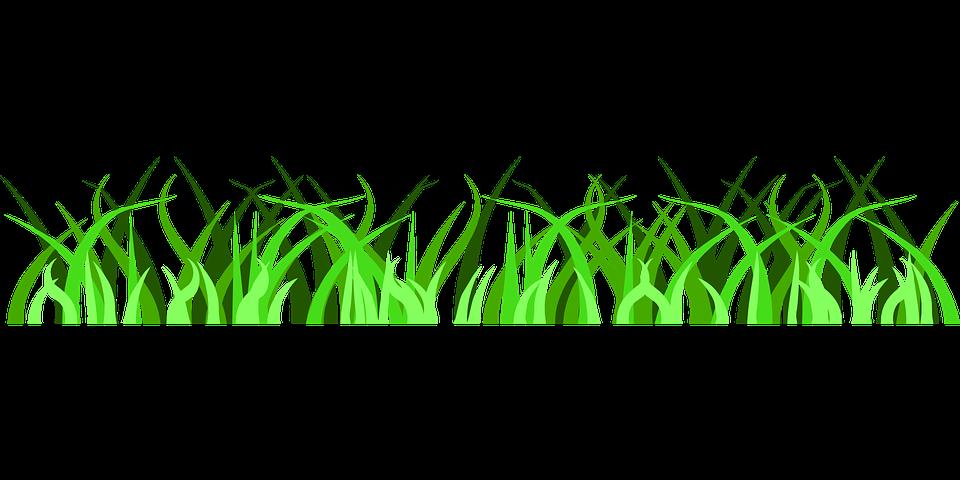 Gras Grun Boden Kostenlose Vektorgrafik Auf Pixabay