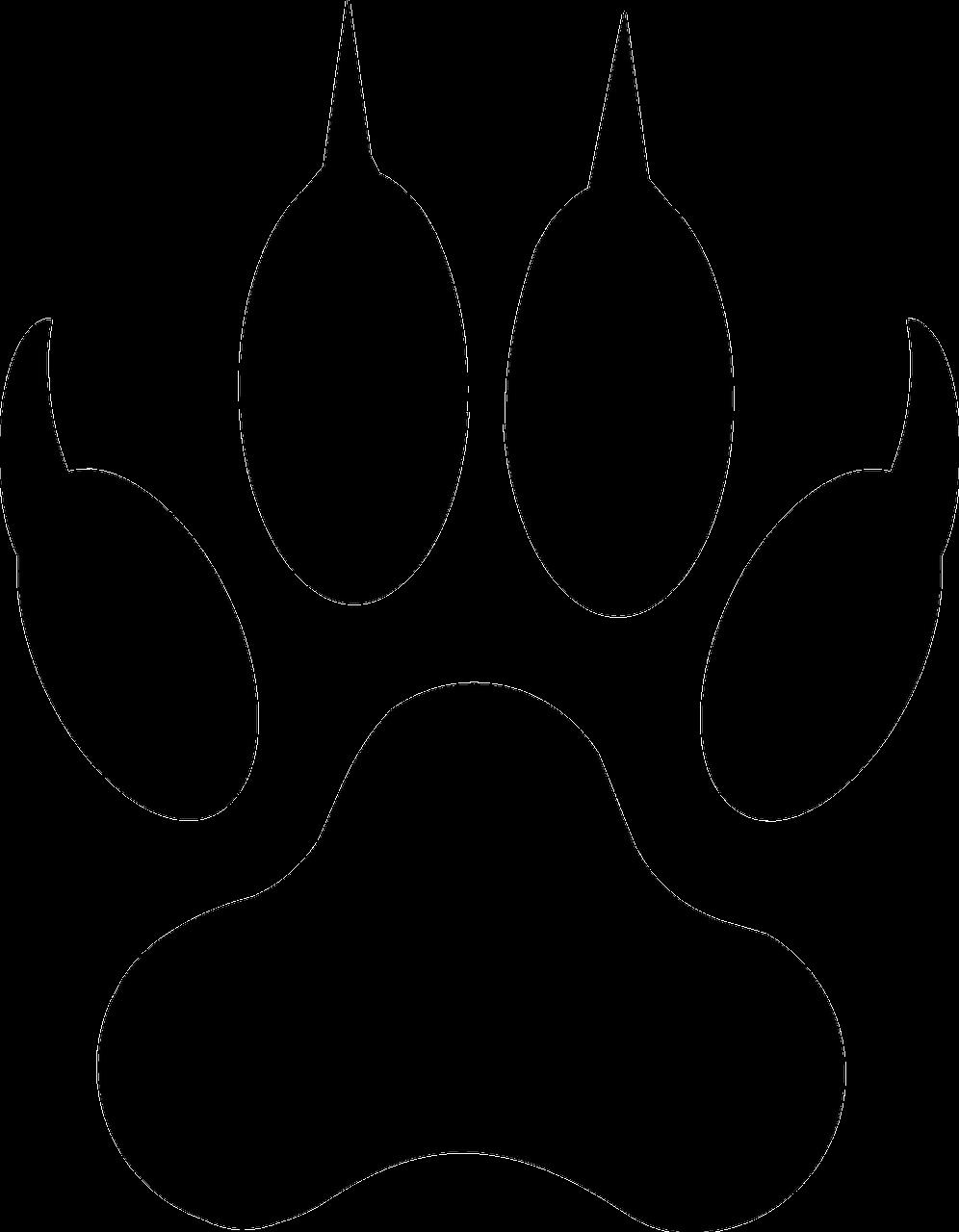 Картинки волчьего следа