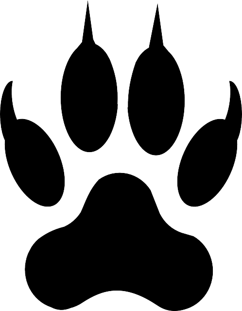 free clip art paw prints  »  8 Picture »  Awesome ..!