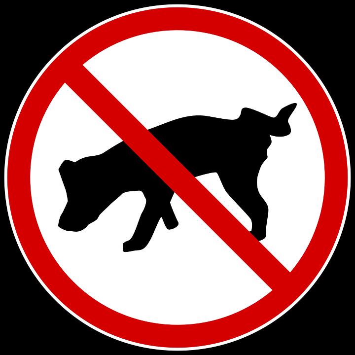 prohibido blanco coito