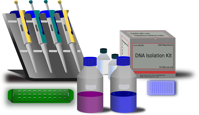 laboratory equipment lab 183 free vector graphic on pixabay