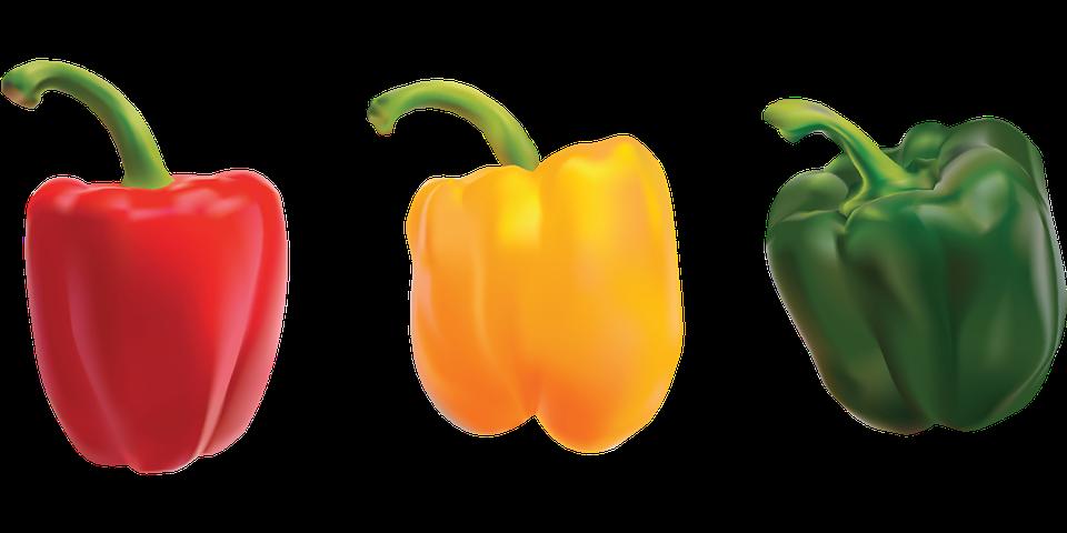 コショウ トウガラシ 野菜 Pixabayの無料ベクター素材
