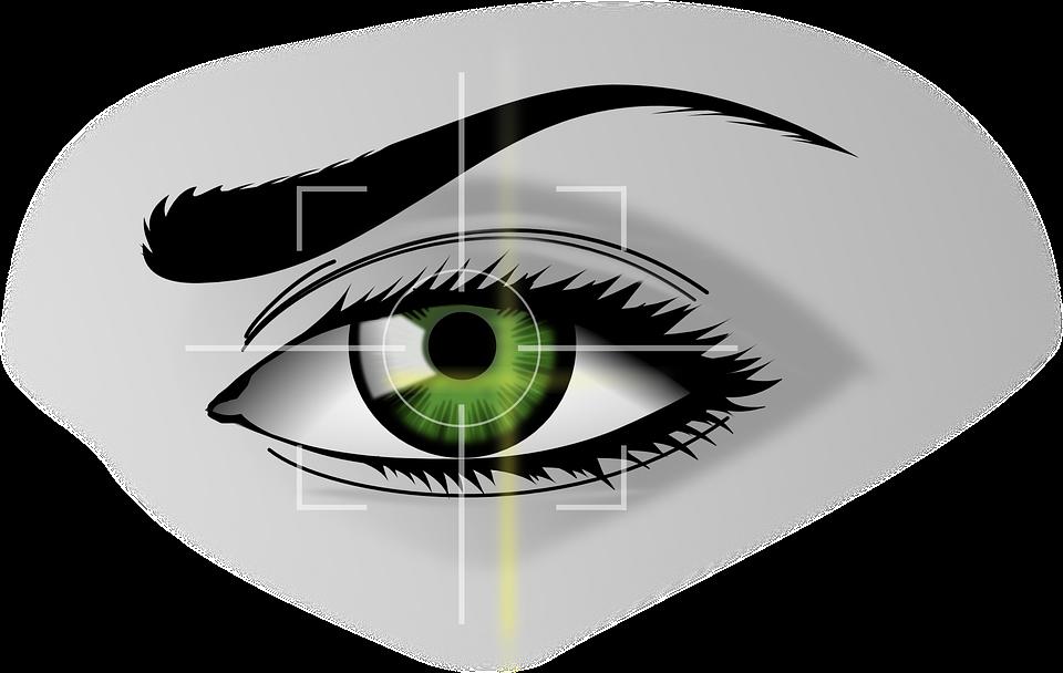 Free Vector Graphic Biometrics Eye Security Free