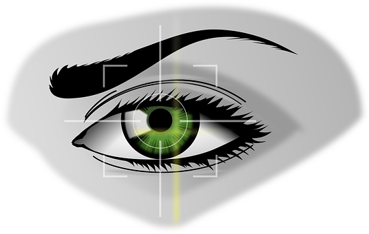 Biometrics Eye Security Iris Scanner Iris