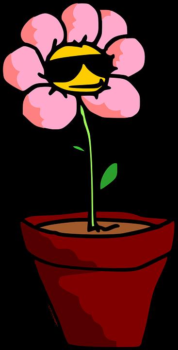 Koleksi 7700  Gambar Animasi Pot Bunga HD Free Downloads