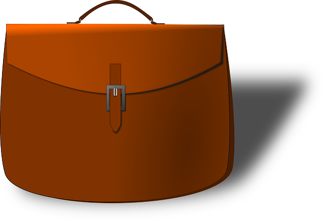 Free Vector Graphic Satchel Purse Bag Briefcase Free