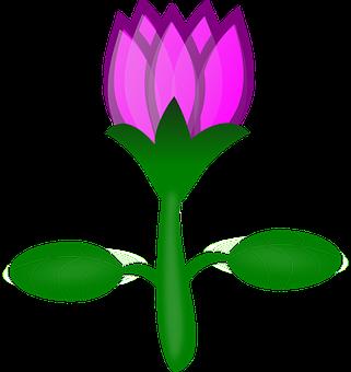 Lily Gambar Vektor Unduh Gambar Gratis Pixabay