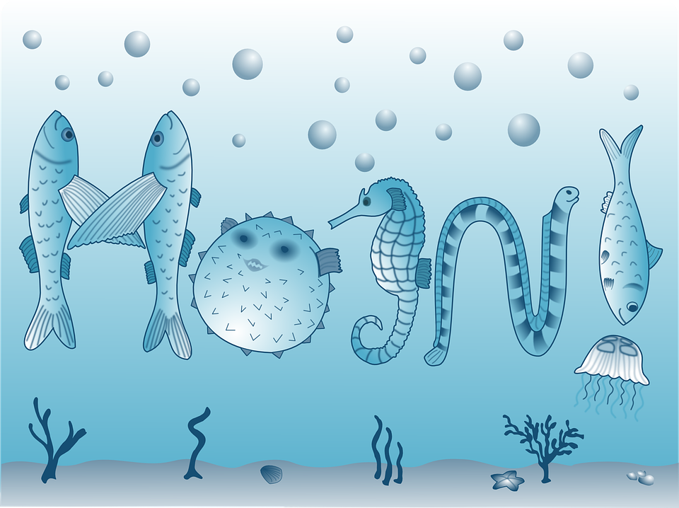 Marine Diversity Fish Sea Life · Free vector graphic on ...