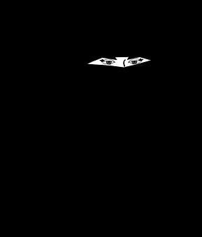 Niqab, Voile, Femme, Phoque À Capuchon