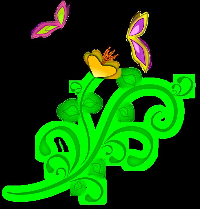 fleur papillons printemps vigne