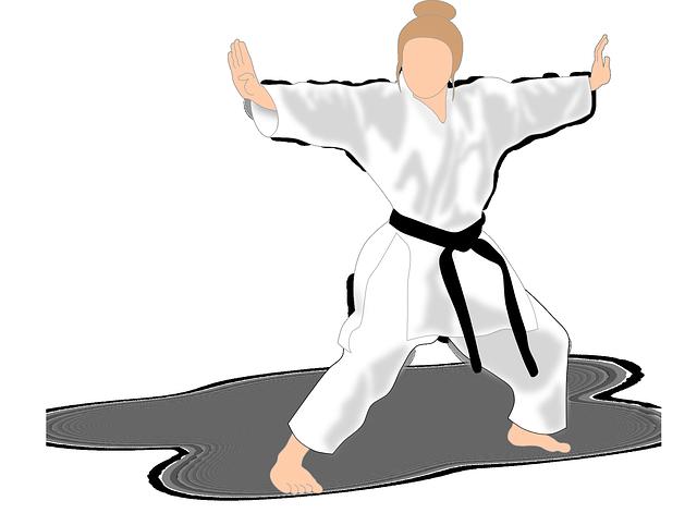 Kata Karate Martial Arts 183 Free Vector Graphic On Pixabay