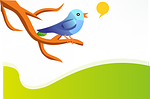 tweet, twitter, bird