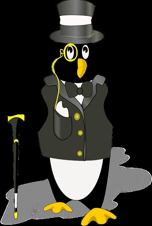 tuxedo gentleman bird · free vector graphic on pixabay