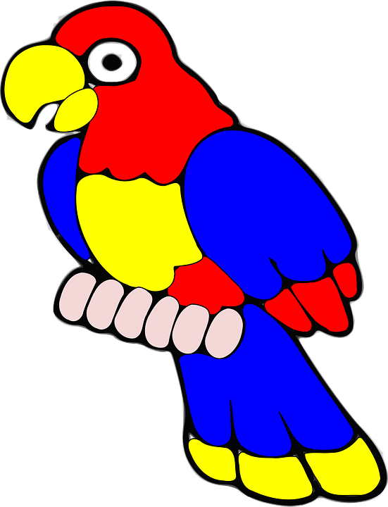 Parrot Bird Tropical Free Vector Graphic On Pixabay