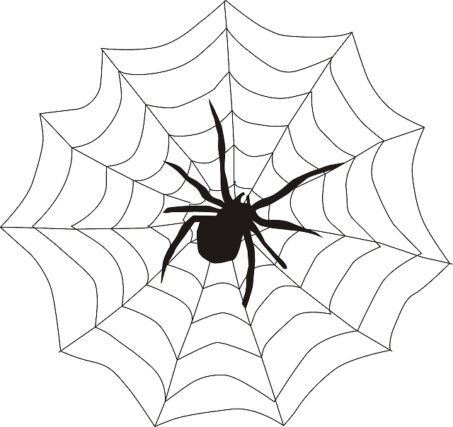 How To Draw Spiderman Logo