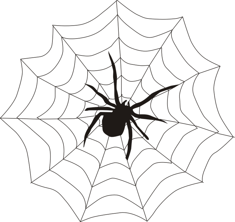 spider spider s web spiderweb free vector graphic on pixabay rh pixabay com vector spider web corner vector spider web border