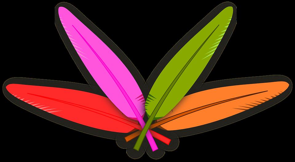 Plumas Colores Ave · Gráficos vectoriales gratis en Pixabay