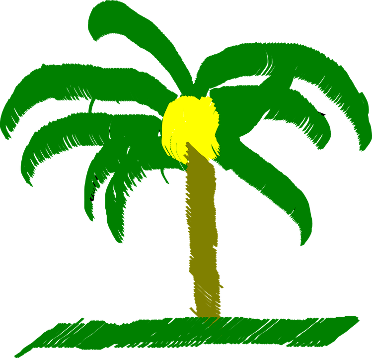 palm tree free vector graphic on pixabay palm tree free vector graphic on pixabay