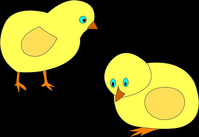 Цыплята картинки для детей нарисованные