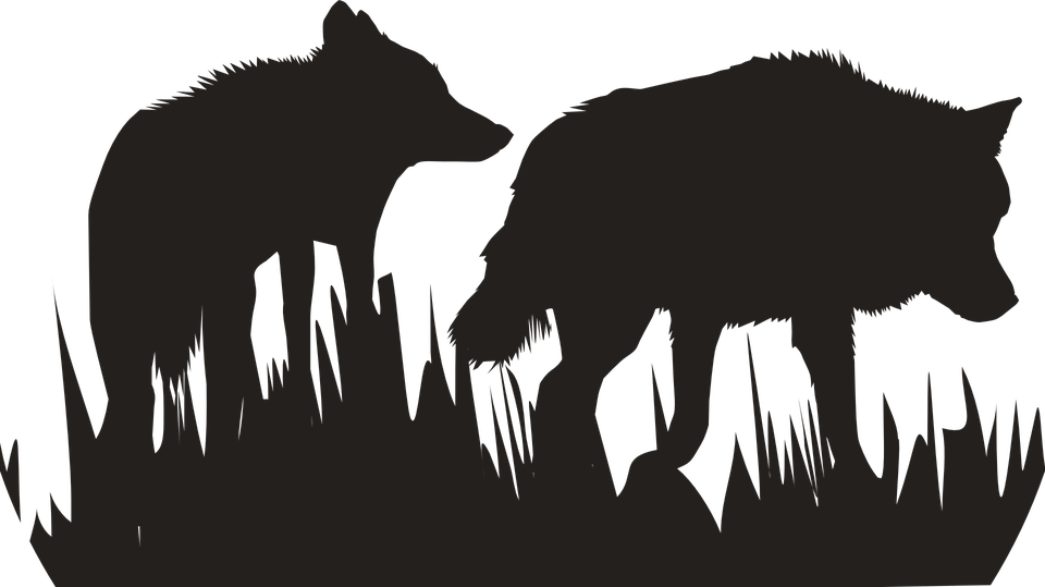 Lobos Perros Siluetas Mamíferos