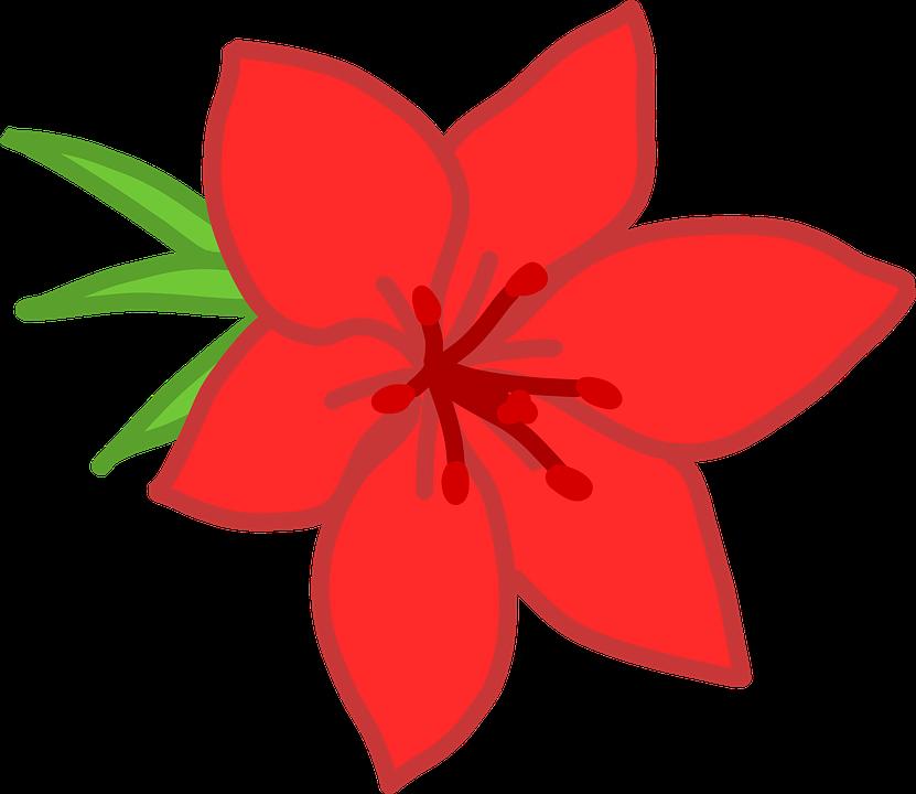 Bunga Merah Sederhana Gambar Vektor Gratis Di Pixabay