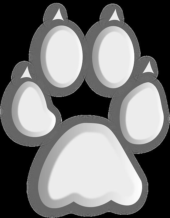 27+ Telapak kaki anjing vector terbaru