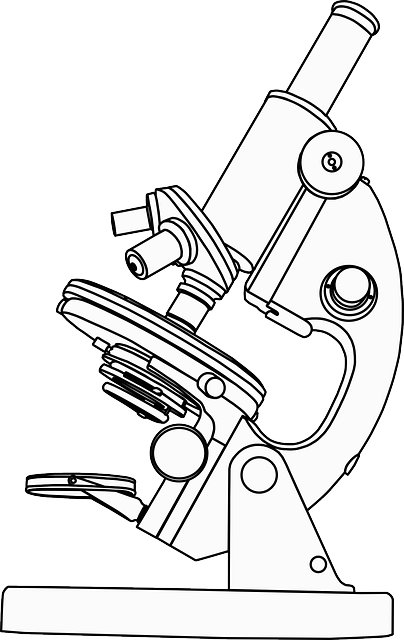 free vector graphic  microscope  magnification  research - free image on pixabay