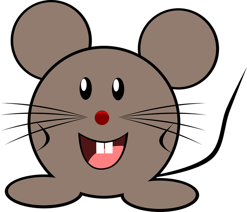 Mouse Grey Little · Free vector graphic on Pixabay