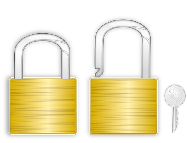 Lock for the gate: choice and options