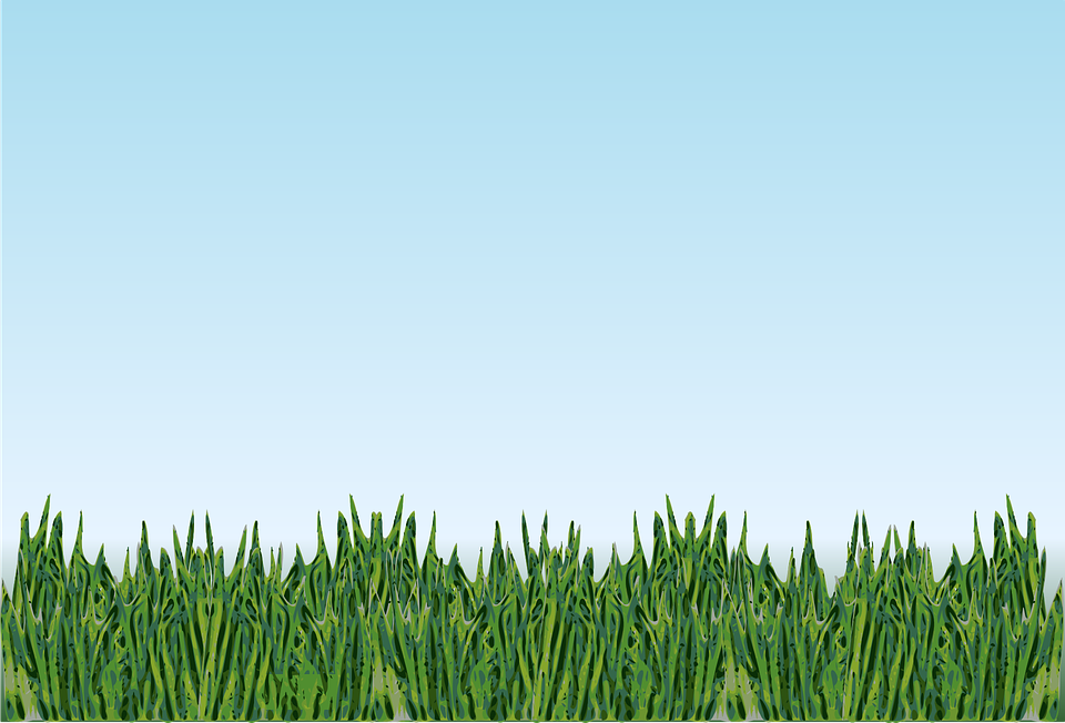 grass landscape meadow  u00b7 free vector graphic on pixabay free ocean clipart for teachers free clipart ocean waves