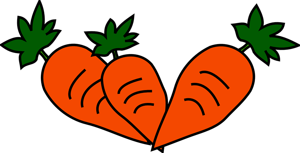 Carrot Food Free Vector Graphic On Pixabay