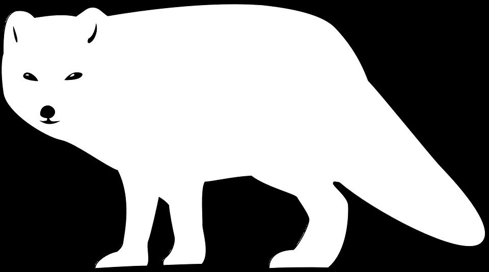 Fox black and white arctic fox clipart stencil in black free design  download - WikiClipArt