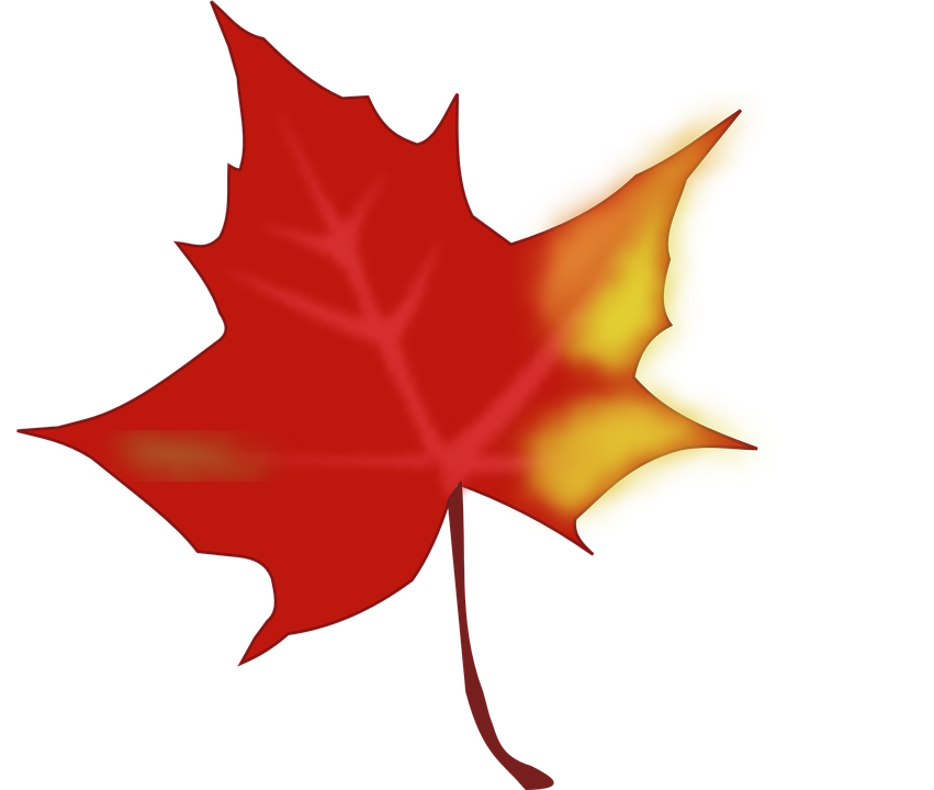 autumn fall leaf maple free vector graphic on pixabay rh pixabay com fall leaves vector background fall leaves vector free