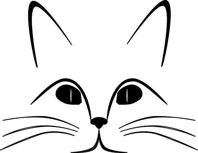 Cat Ears Eyes · Free Vector Graphic On Pixabay
