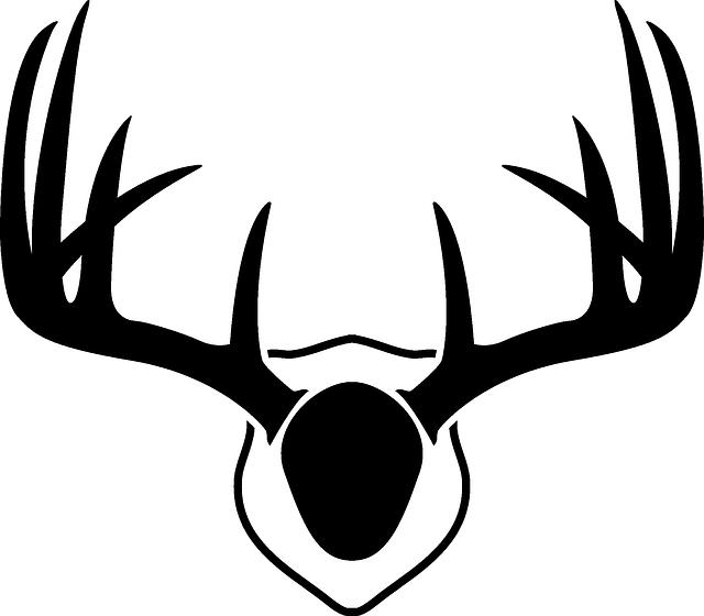 Рога оленя картинки для срисовки