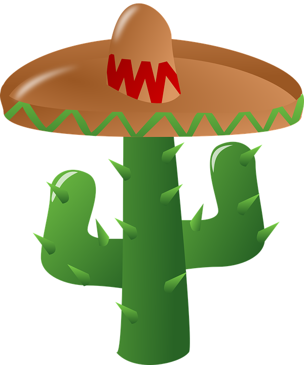 Cactus, Sombrero, Mexican, Green, Hat, Spiny, Mexico