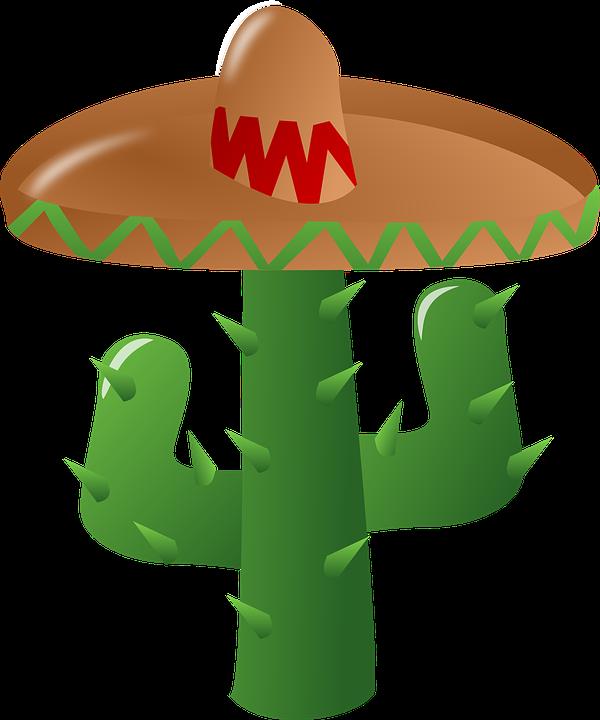 Image Vectorielle Gratuite Cactus Sombrero Mexique