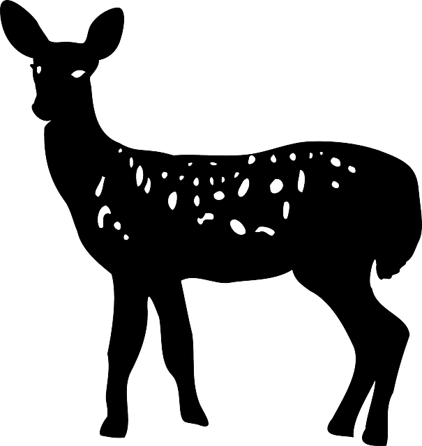 Free Vector Graphic Animal Deer Doe Nature Free