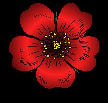 belles, fleurs - images gratuites sur pixabay