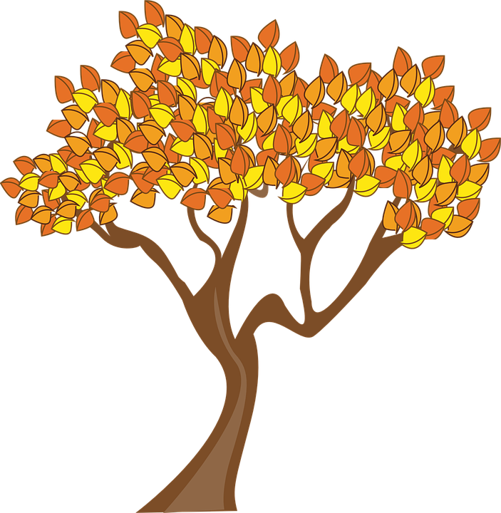 autumn season tree free vector graphic on pixabay rh pixabay com fall tree clipart images fall tree clip art black and white