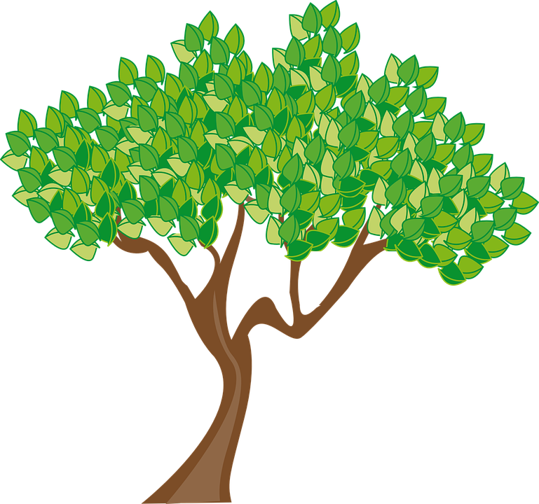 Free vector graphic Season Summer Tree Leaves Green Free