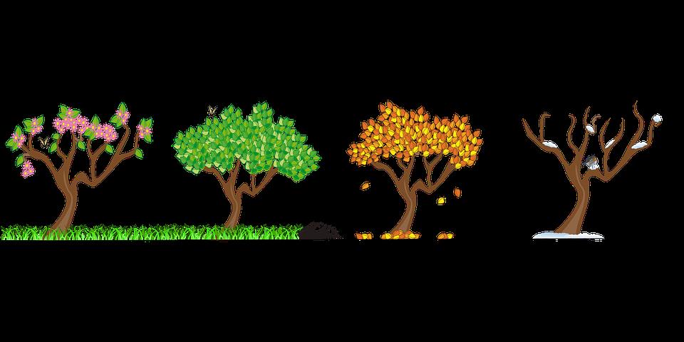 Jahreszeiten Vier Kostenlose Vektorgrafik Auf Pixabay