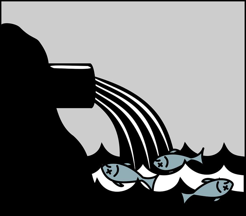 Aquatic life in danger