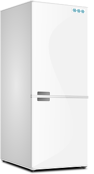Fridge, Kitchen, Refrigerator, Appliance