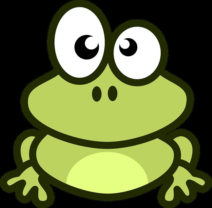 Katak Hewan Hijau Gambar Vektor Gratis Di Pixabay