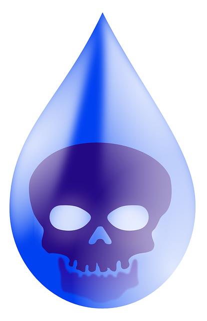 Poison skull vector